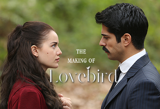 The Making Of Love Bird